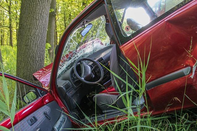 autonehoda v lese